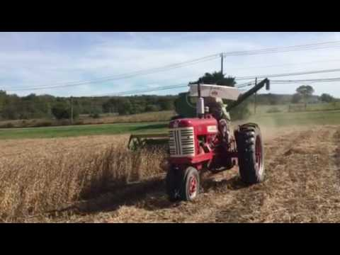 Combining Soybeans With Old Farm Equipment