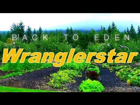 Back To Eden Gardening With Wood Chips - YouTube