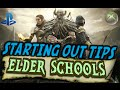 Elder Scrolls Online Ps4/Xbox Starter Guide (Elder Schools #1)