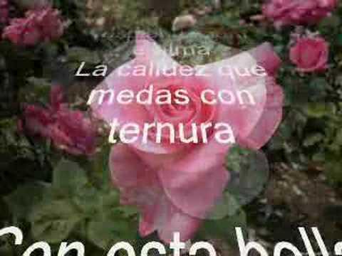 una rosa para mi novia