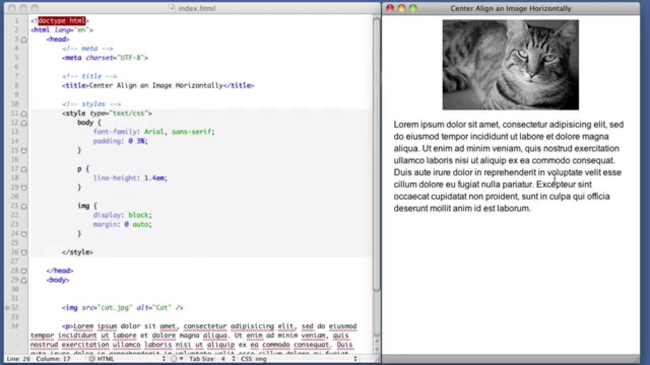 картинку по центру html