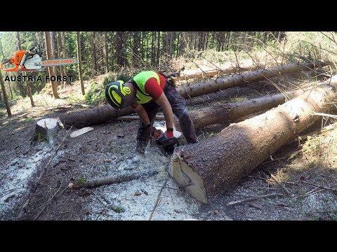 Timberjack 1470D Harvester after Storm Damage  in action #6