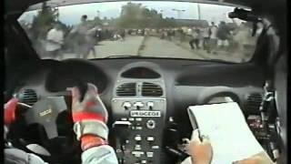 Peugeot 206 WRC Janika
