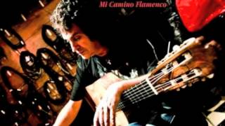 PACO EL LOBO - album Mi Camino Flamenco (teaser)