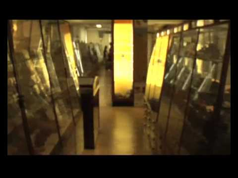 The Petrie Museum - Introduction