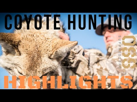 KILL SHOTS  – Coyote Hunting Compilation – Highlight Reel
