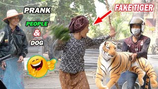 Big Fake Tiger Prank People and Dog Funny Pets Videos