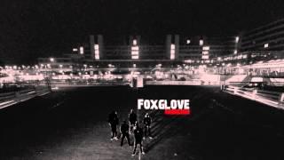 FOXGLOVE HARDCORE - Protonenpumpenhemmer