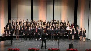 Weihnachtskonzerte 2014 des Lessing-Gymnasium Norderstedt: Grosser Chor