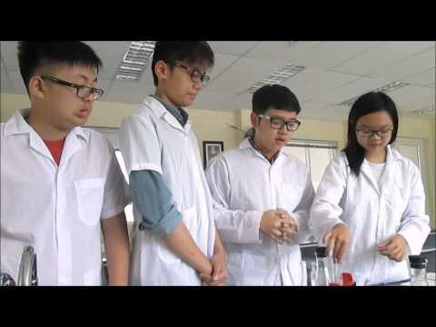 Thí nghiệm : Phát hiện hô hấp thực vật