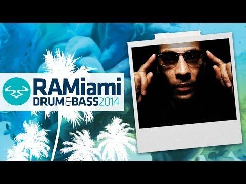 Dynamite MC & Origin Unknown - Hotness (Roni Size Remix)