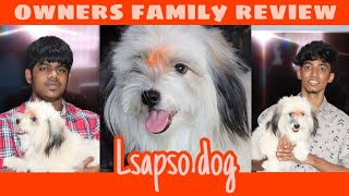 Lhasa Apso dog    owners family review of lsapso breed   Tamil   Pets Mall