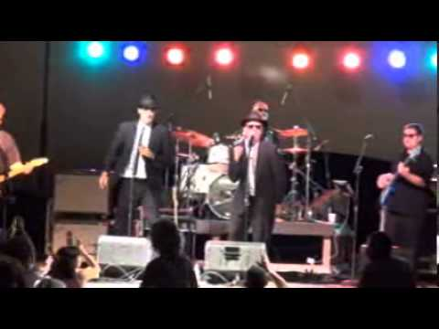 Blues Brothers Concert - August, 2013!