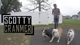 Day In The Life: My English Bulldogs!