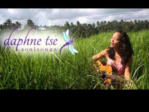 Daphne Tse -  Magnificence
