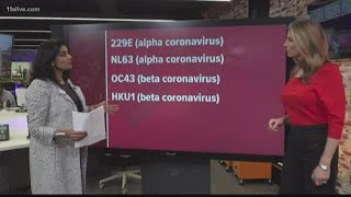 The different strains of coronavirus explained