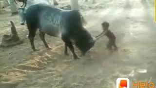 தமிழர் வீரம் | Tamil WhatsApp status video