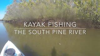South Pine River Kayak Fishing on Dragon Kayaks