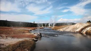 Kurtlar ve Nehirler