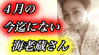 小林麻央さんと離れて暮らす海老蔵さんのブログが切ない・・・【ゴシップ帳】 小林麻央 検索動画 22