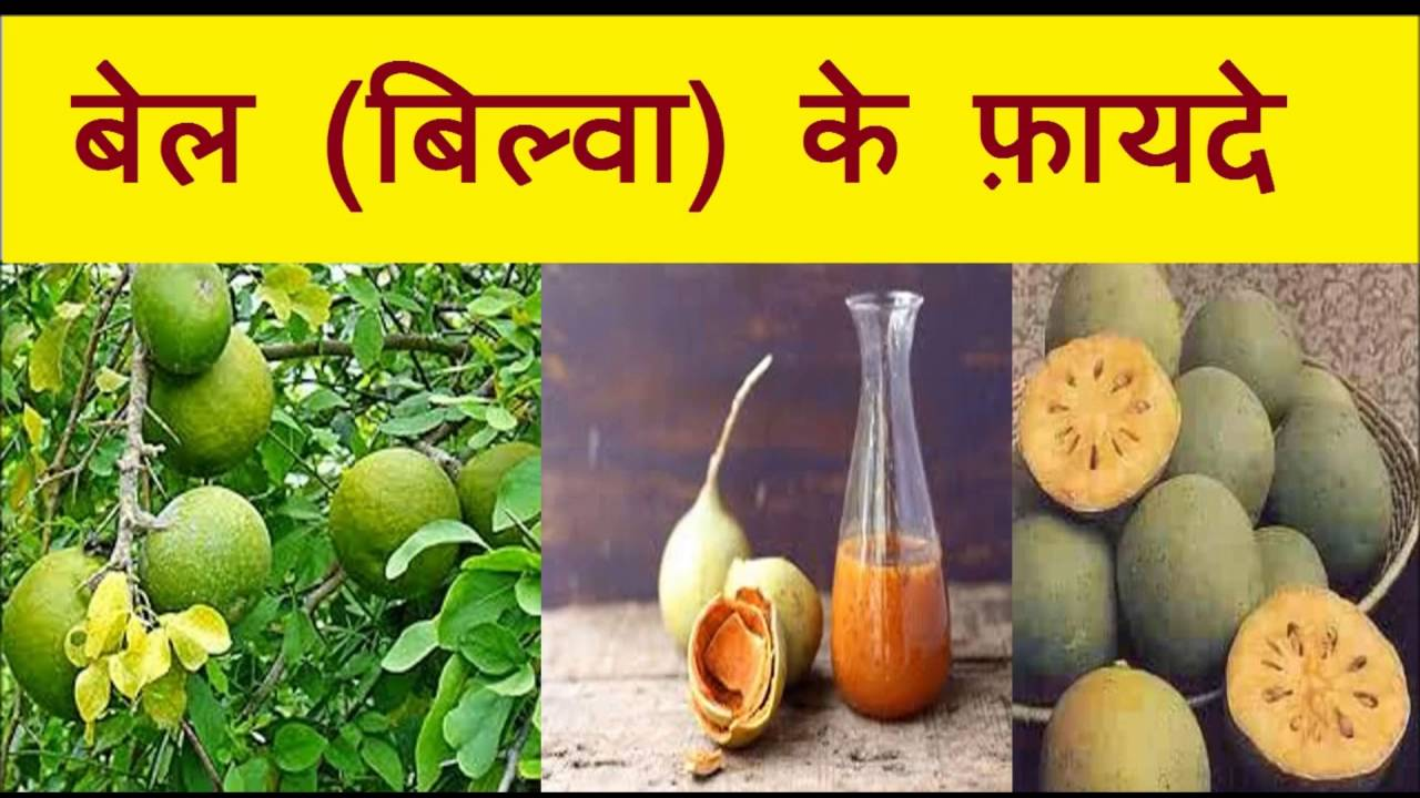 Ayurveda Kche. Great Free Stunning With Mlleimer With Mllbehlter