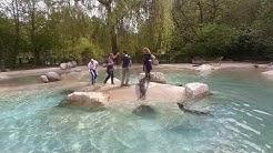 Videodreh Robben Zoo Augsburg