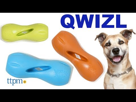 QWIZL Chew Toy from West Paw Design