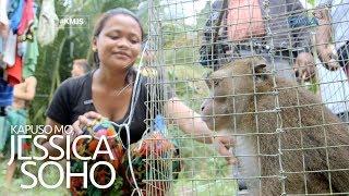 Kapuso Mo, Jessica Soho: Bata sa Agusan del Sur, kinagat ng unggoy?!