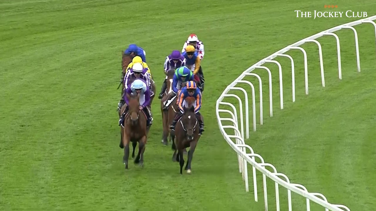 Download Minding - The 2016 Oaks