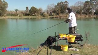 TUBERTINI FEEDER FISHING AL BIG FISH  - PESCA ALLA CARPA