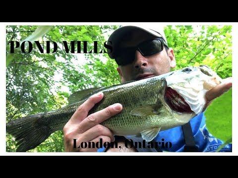 Bass Fishing- Pond Mills- London, Ontario