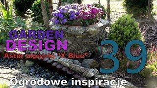 """GARDEN DESIGN (39) - ASTER ALPEJSKI """"X BLUE"""" - Jak zmontować fajny gazon?"""