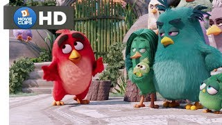 The Angry Birds Movie Hindi (02/14) Red Got Punished Anger Management Class MovieClips