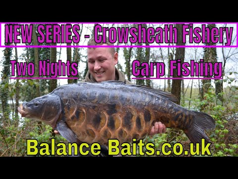 Day Ticket Carp Fishing -Tips And Tricks