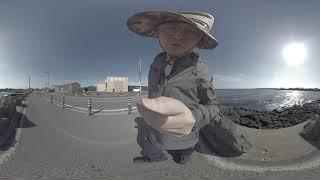 제주도 여행 코스 세화해변부터 용정리해변까지  [VR …