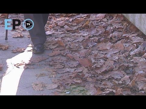 Aviso a Urbaser por no retirar hojas de la calle en Lugo