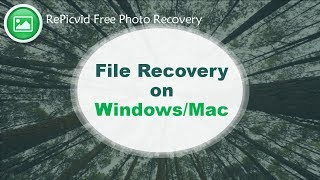 File Recovery on Windows/Mac