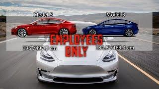 Model 3 Leaked Employee Handout!