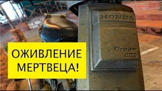 Оживление мертвеца Дима мото-подбор или пародия на Ильдара. Honda Dream. Вьетнам Муйне 2019