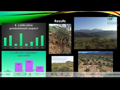 2016D2S10L2 Laaiqah Jabar Management of Euphorbia colliculina, E. schoenlandii and E. susannae