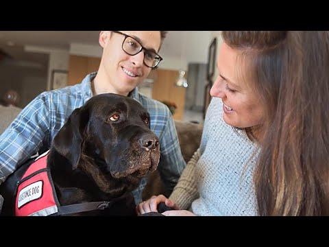 Service Dog is Best Medicine For Boston Marathon Bombing Survivor