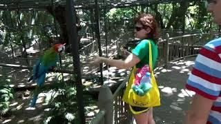 Casela Nature Parks Mauritius Маврикий парк Касела 6