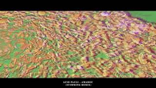 Acid Pauli - Amadou (Stimming Remix)