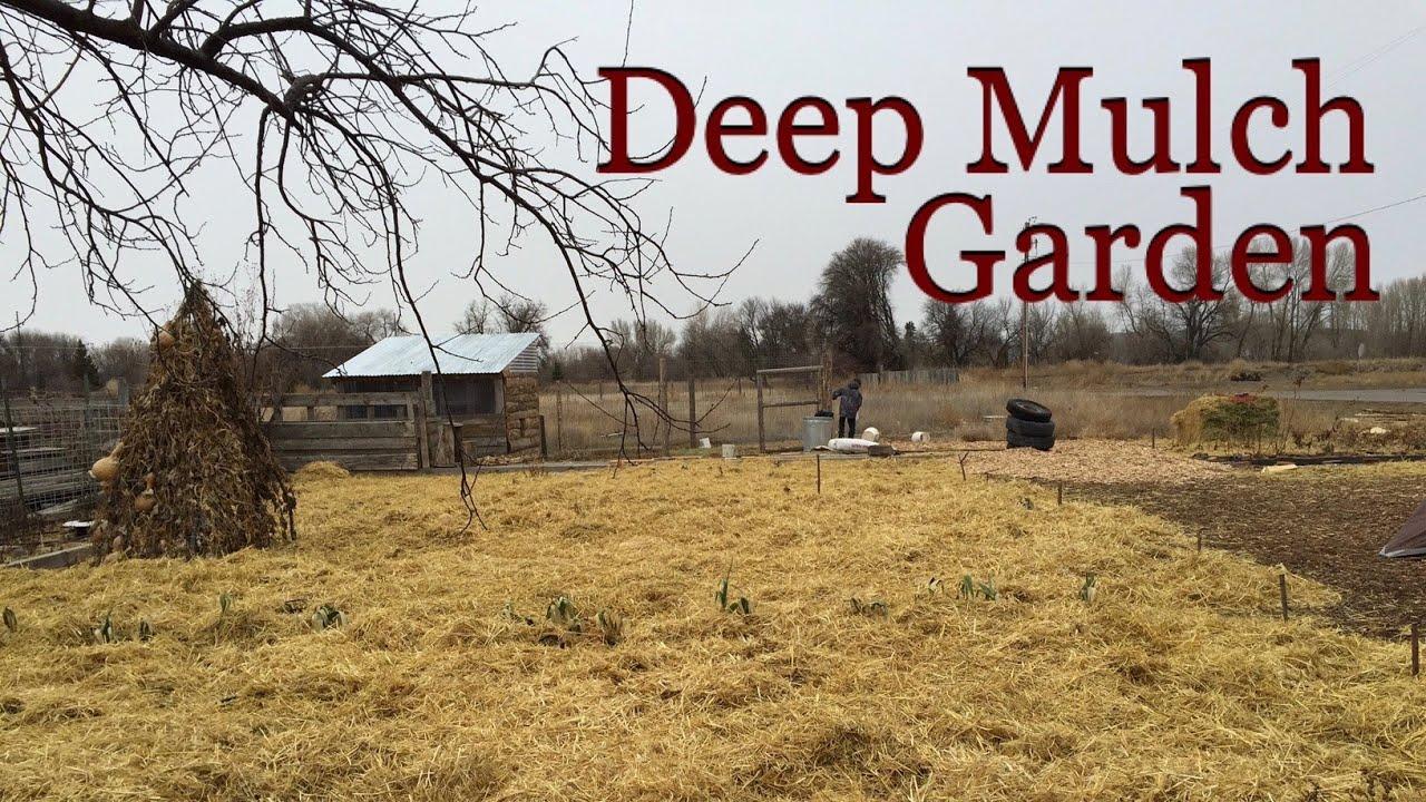 deep mulch gardening, winter preparations for the deep mulch garden - youtube, Design ideen
