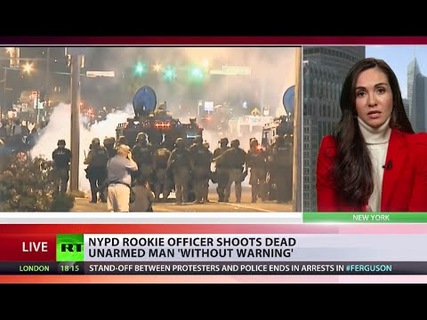 American Epidemic? NYPD cop shoots dead unarmed man 'without warning'