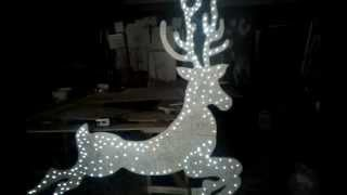 Reindeer W8ft X H7ft Video