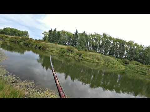 Ловля Щуки Летом На Спиннинг. Рыбалка 2019.