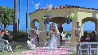 Wedding Dove Event Orange County Dove Rentals 714 622-4095