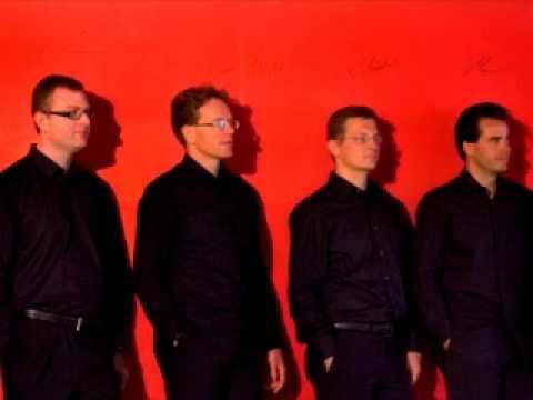 Schubert Quartettsatz  D.703   Steude Quartett