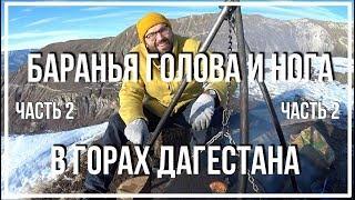 голова и нога барана в горах Дагестана (Часть 2)